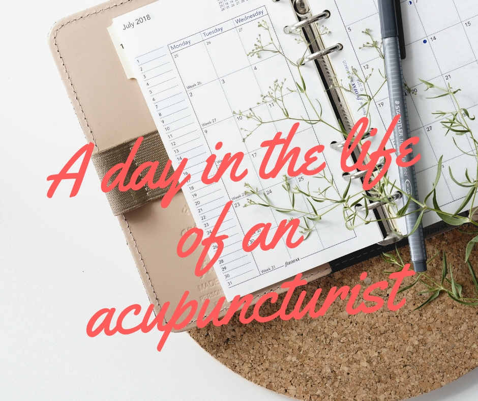 A day in the life of an acupuncturist
